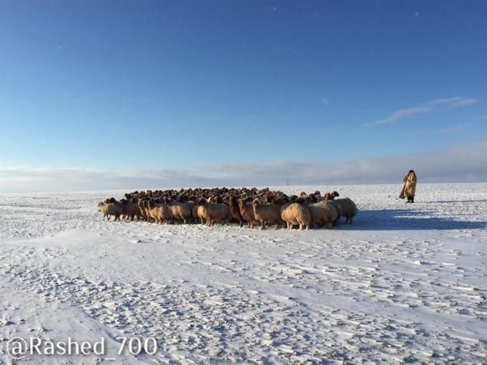 ثلوج طريف في السعودية في المحافظات الشمالية