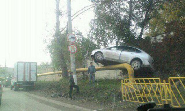 لا يجب على الجميع قيادة سيارة