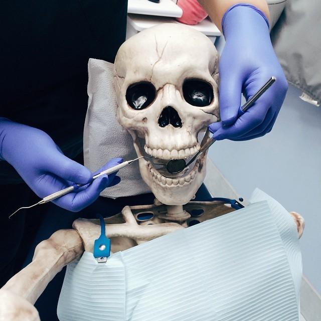 صور مضحة هيكل عظمي طبيب الأسنان
