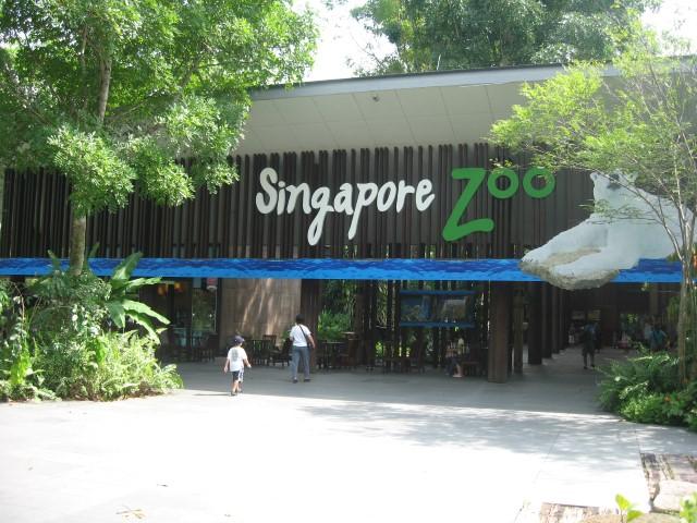 أجمل حدائق الحيوانات
