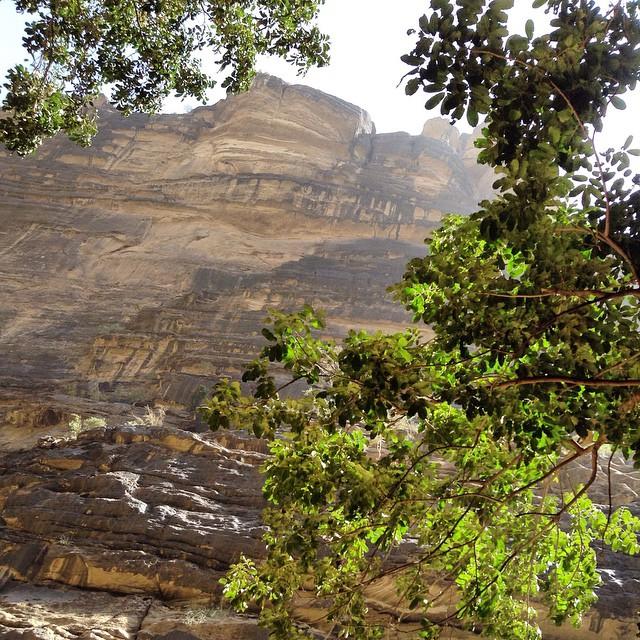 مشاهد سياحية خلابة من وادي لجب في جازان جمال الطبيعة السعودية