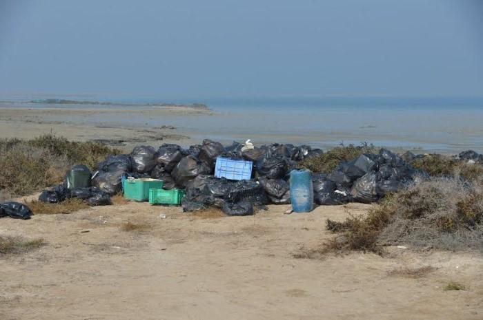 حملة تنظيف جزيرة جنة بالجبيل