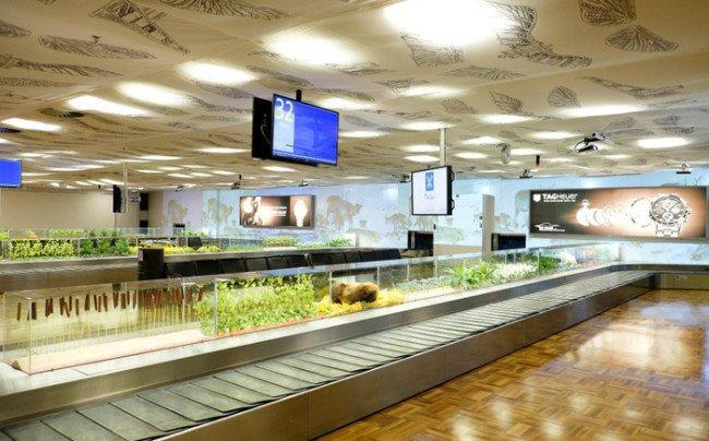 مطار فنلندا