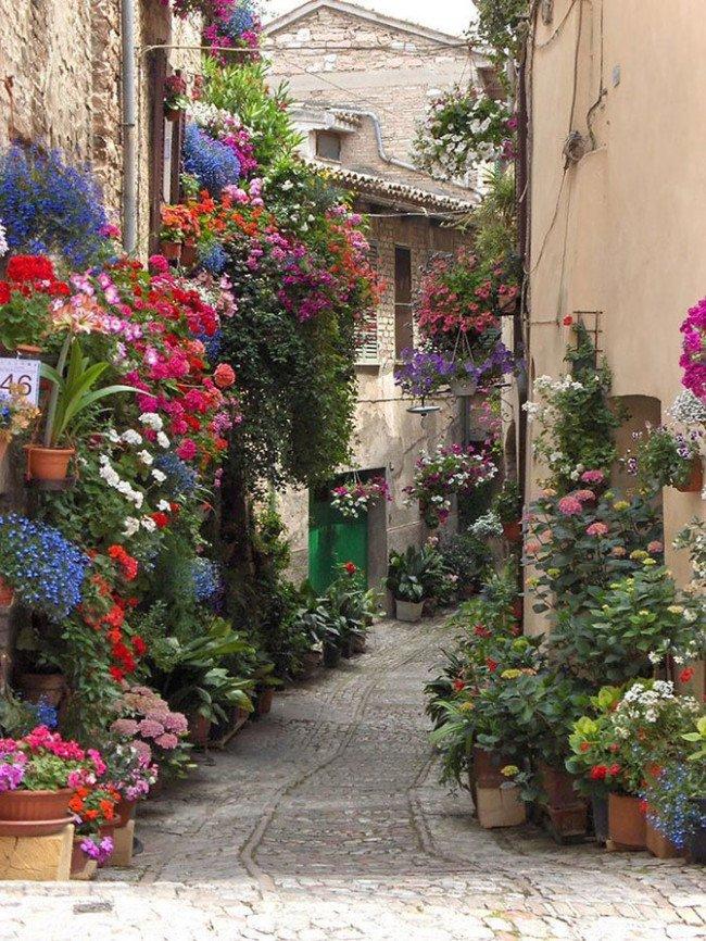 أسيزي، إيطاليا