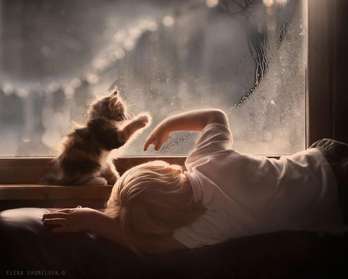 animal children photography elena shumilova