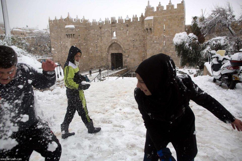 القدس 6