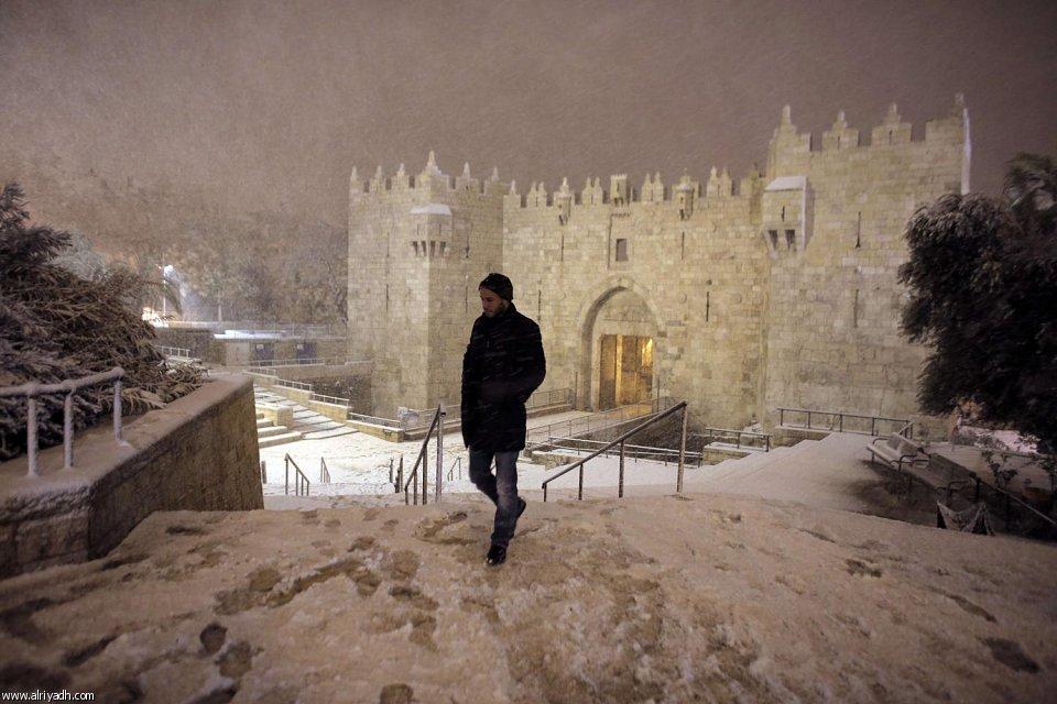 القدس 8