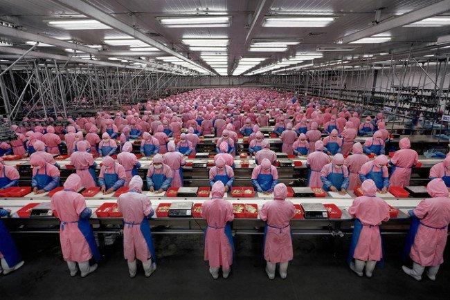 صور جميلة للمصور الألماني أندرياس غورسكي الأغلى في العالم