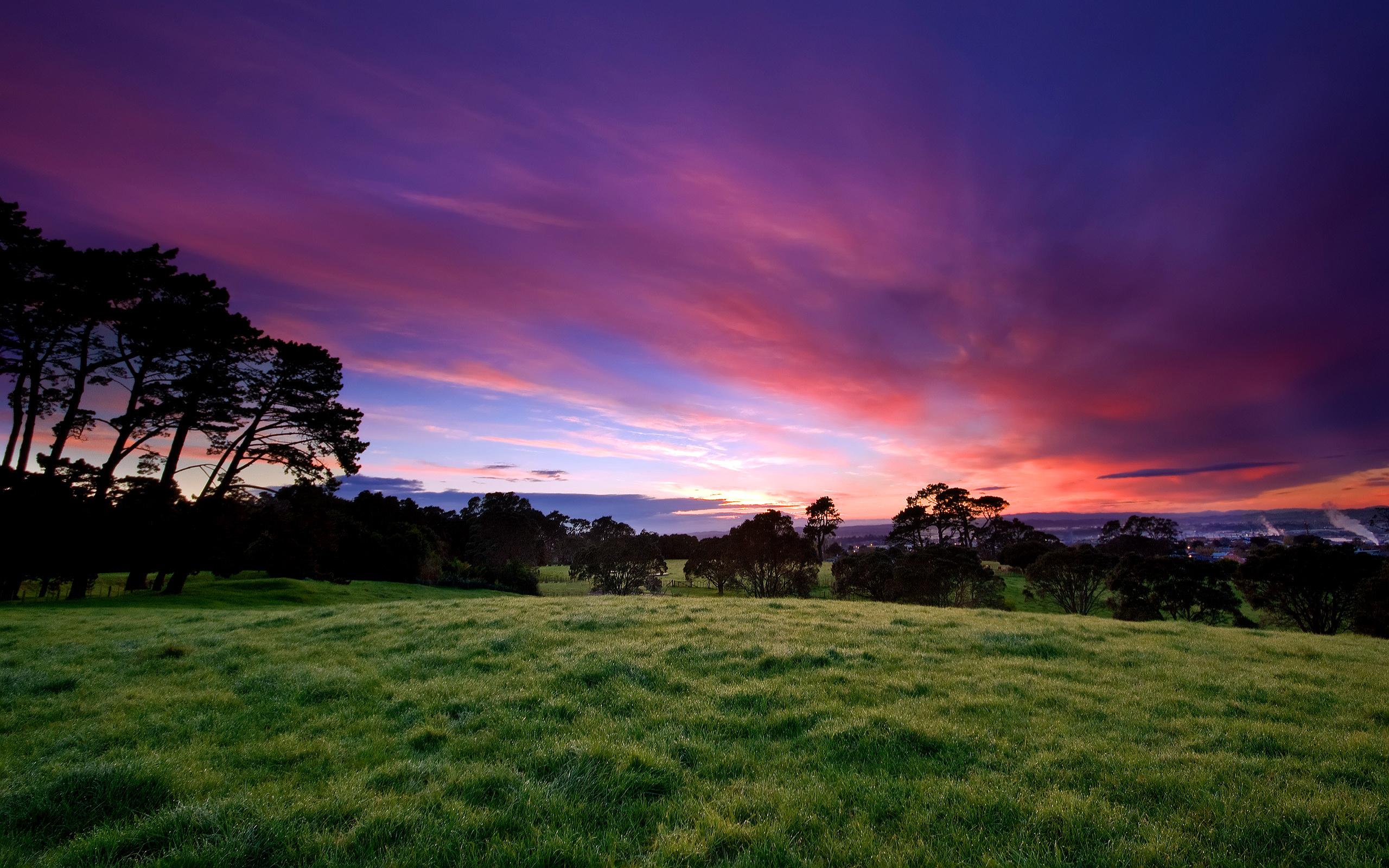 beautiful_morning-wide