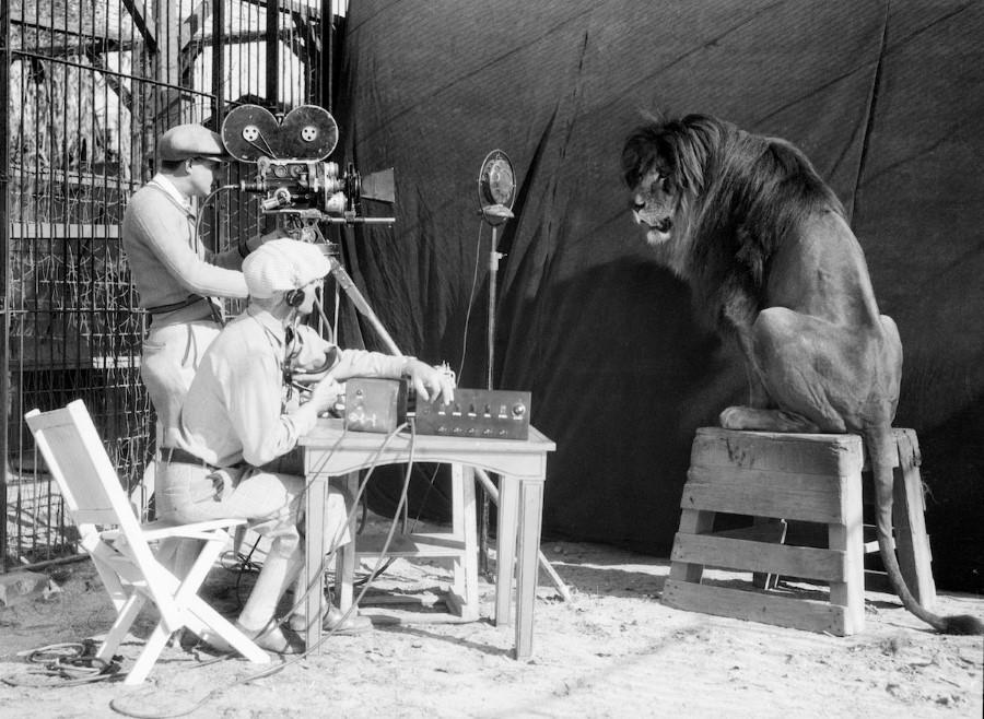 أسد أفلام MGM