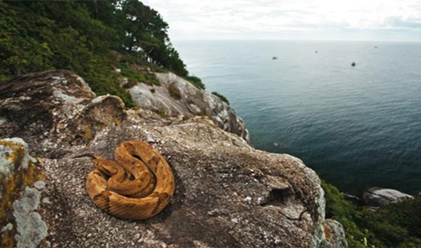جزيرة غراندي