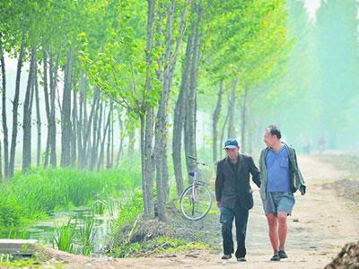 رجلان-عاجزان-يزرعان-الأشجار