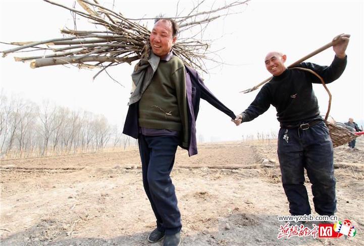 رجلان عاجزان يزرعان 10000 شجرة