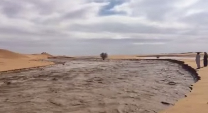 فيديو سيول-الربع-الخالي