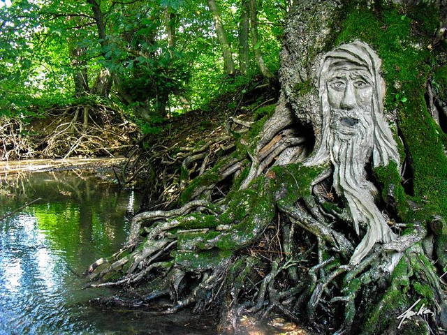 Root Keeper