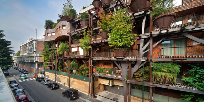 منزل الأشجار
