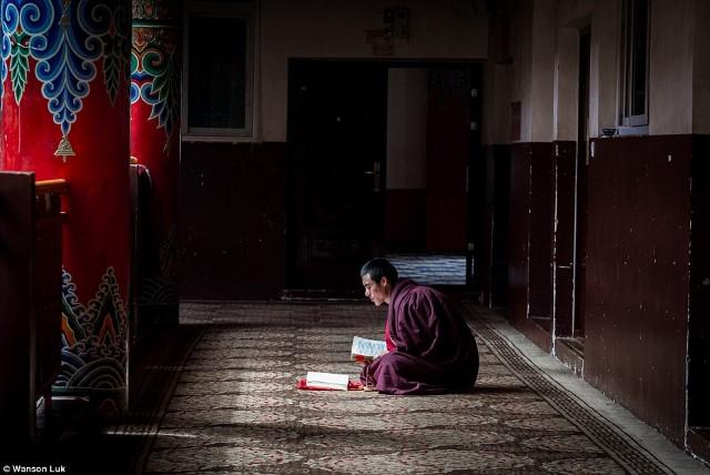 أكبر أكاديمية بوذية في العالم2
