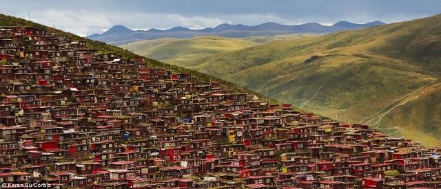 أكبر أكاديمية بوذية في العالم6
