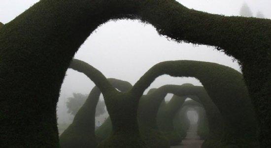 متنزه فرانسيسكو ألفرادو