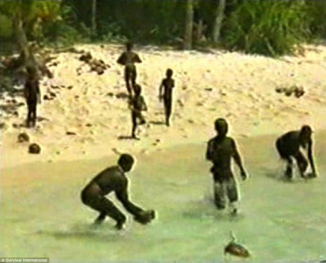 جزيرة سينتينال3