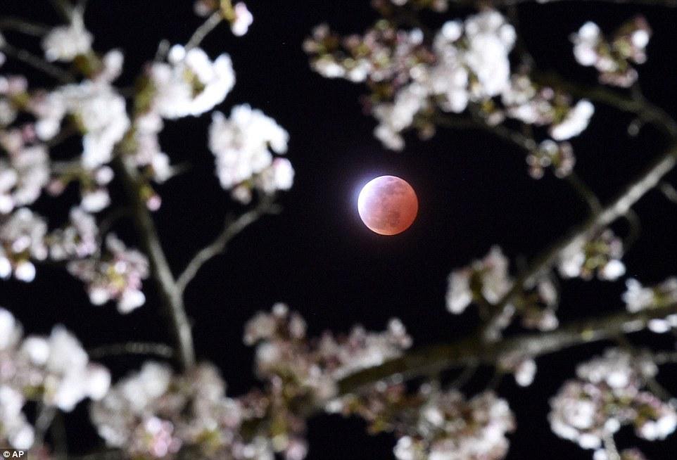 خسوف القمر 7