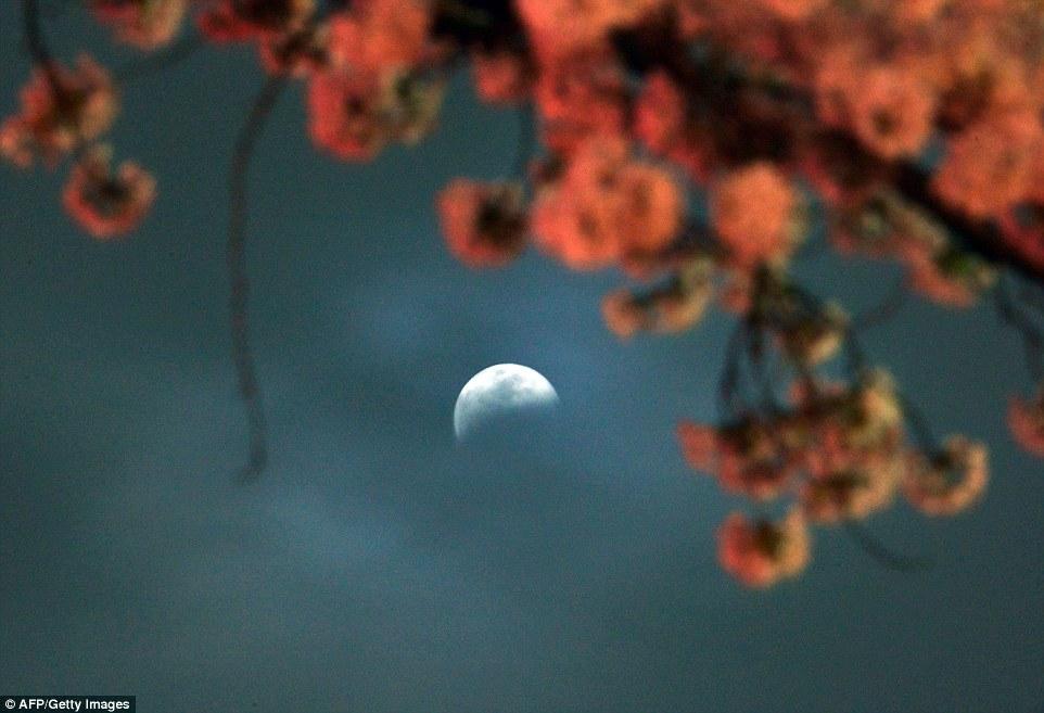 خسوف القمر 8