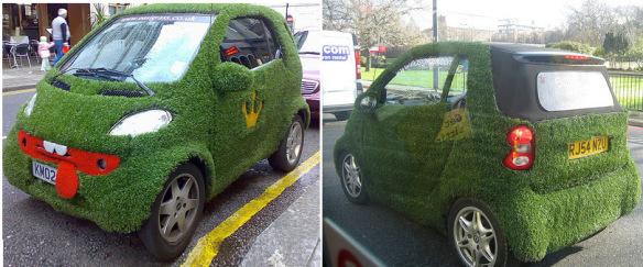 سيارة مستوحاة من العشب