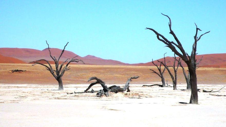 صحراء 11