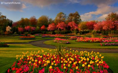 ألوان الربيع في حديقة فيكتوريا بارك