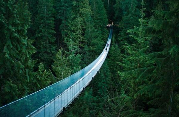 منظر جميل لجسر معلق