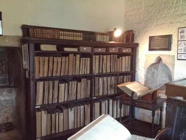 مكتبة فرانسيس تريغي