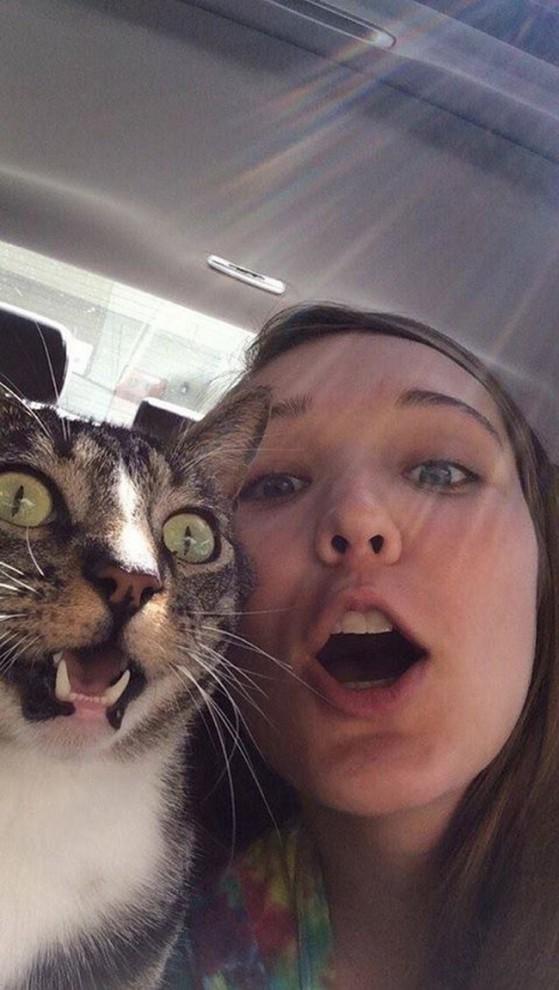صور مضحكة وفكاهية لحيوانات تشارك أصحابها صور السيلفي