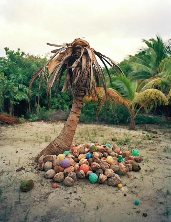 فنان يسلط الضوء على خطر القمامة في الطبيعة