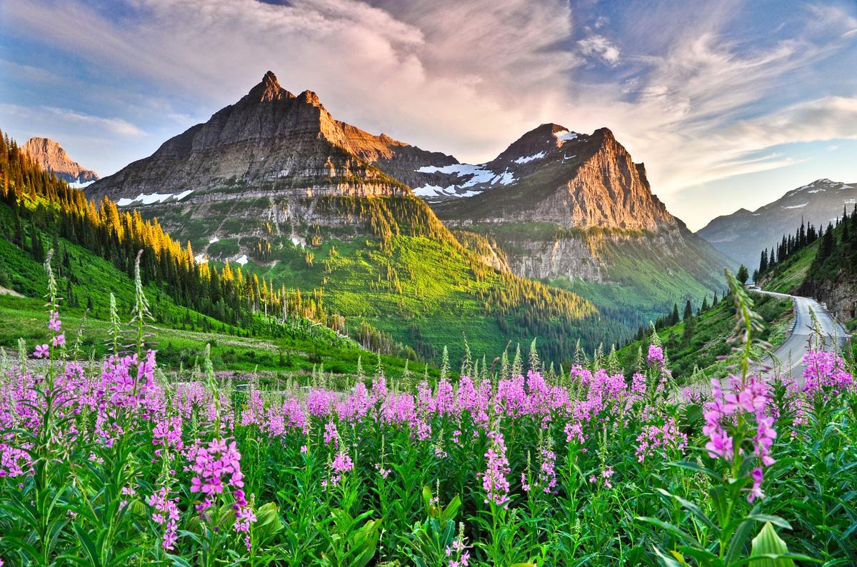 America-nature