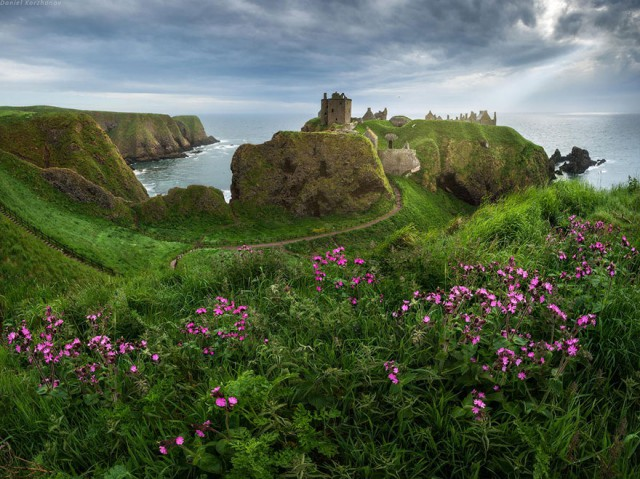 اسكتلندا 5