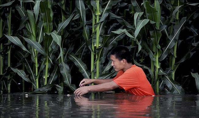 الفيضانات في جنوب غرب الصين2