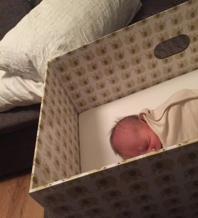 المولود الفنلندي ينام في صندوق كرتوني