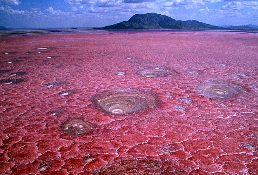 بحيرة ناترون في تنزانيا