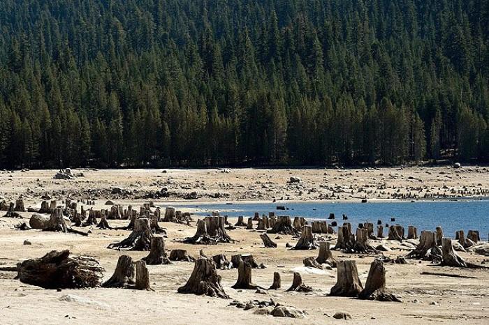 جفاف كاليفورنيا4