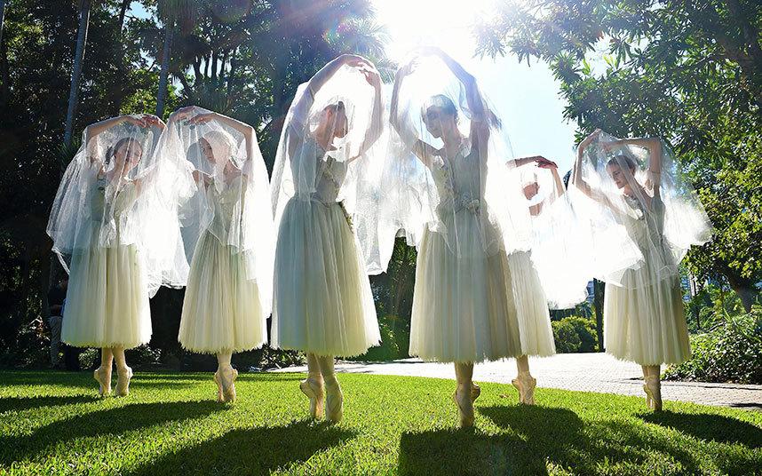 راقصات الباليه يؤدين رقصاتهن في الحداق النباتية في بريسبان.