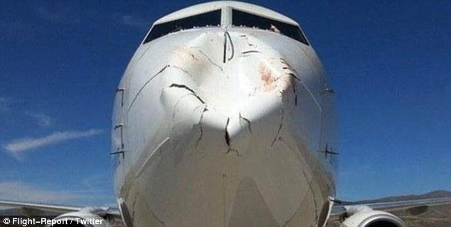 طائر يتسبب في تحطيم مقدمة طائرة بوينغ