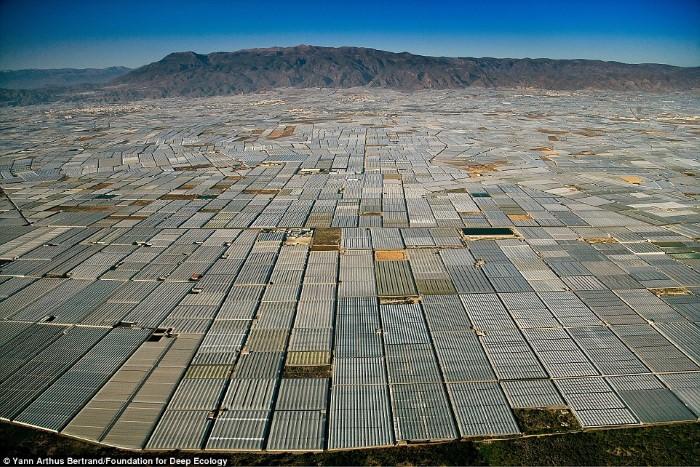 بقدر ما تستطيع أن تراه العين، فإن البيوت البلاستيكية الزراعية تغطي حقل واسع في الميريا، أسبانيا