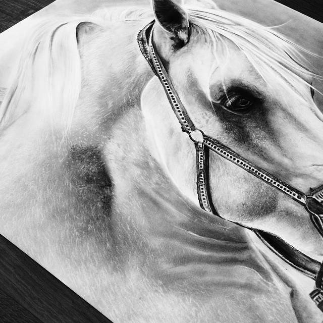 الرسم والفن التشكيلي مع المبدعة السعودية أفنان الحربي