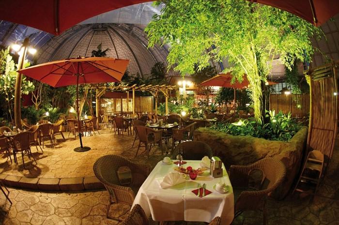 مطاعم سياحية استوائية