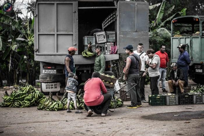 صور من حياة الشعب الكوبي للمصور ماك تايلور