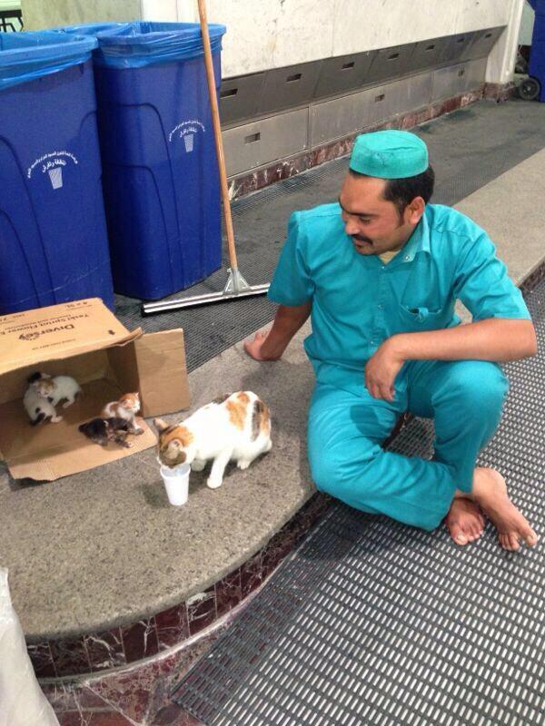 عامل نظافة يروي ظمأ قطة صغيرة