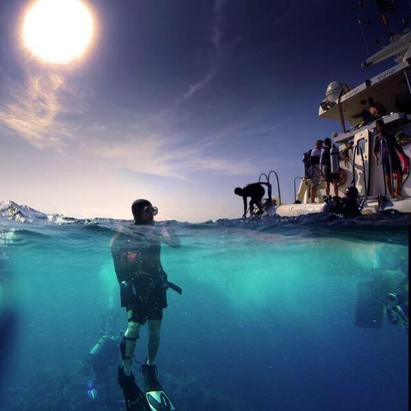 صور منوعة الغوص على سطح شاطئ البحر الأحمر.