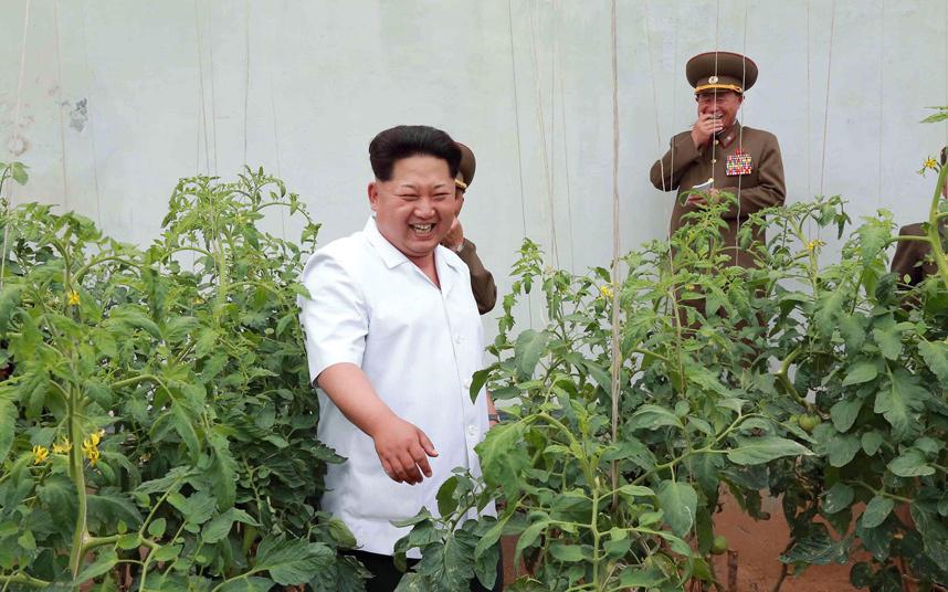 الزعيم الكوري كيم جونغ أون يضحك برفقة عدد من جنوده خلال تجوله في مزرعة للطماطم