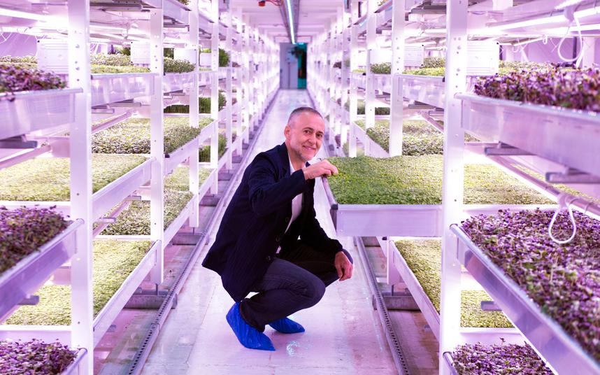 مزرعة جوفية تحت الأرض