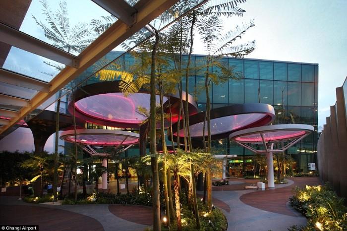 مطار سنغافورة
